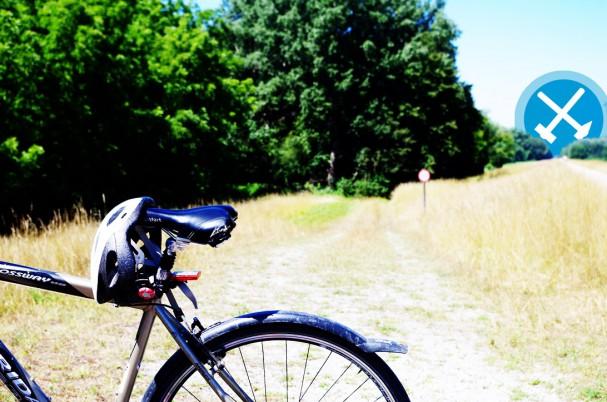 CycleEG_mitlogo.jpg