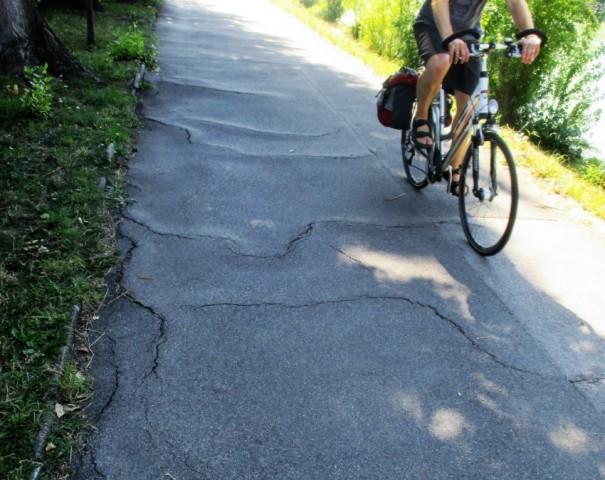 Radweg mit Wurzeln