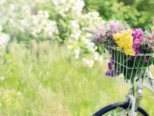 fahrrad-fruehling-pixabay-cropped.jpg