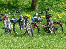 bicycles-6895_1280.jpg