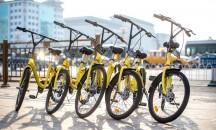 bikesharing_ofo_china_c_ofo.jpg