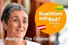 koalitionrad_gruene.jpg