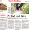 """NÖN-Artikel """"Per Rad nach Wien"""""""